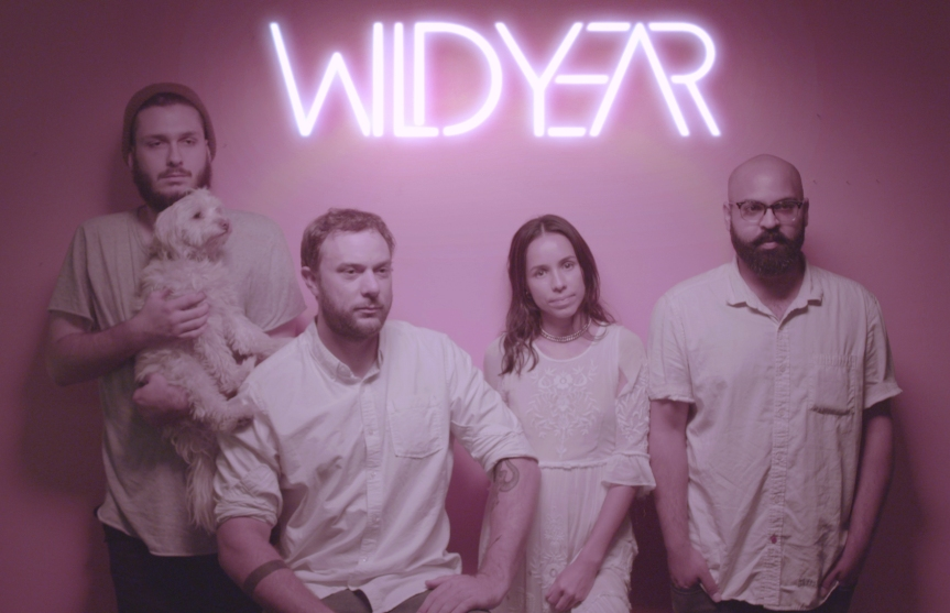 "Wild Year – ""Meanwhile…(Little Spark)"""